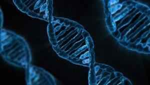 Master in bioetica e scienze della vita